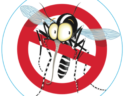 Disinfestazione da insetti alati – Martedì 21 Settembre 2021